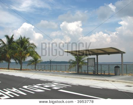 Empty Bus Stop By The Coast