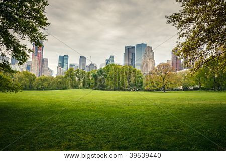 Central park at rainy day, New York City