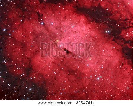 Ic1318 Gamma Cygni Nebula