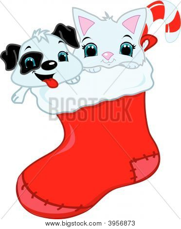 Kitten And Puupy In A Stocking
