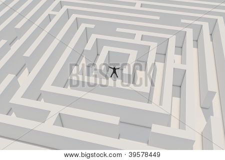 Successfull Businessman In Maze
