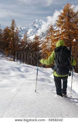 Winter-Wandern