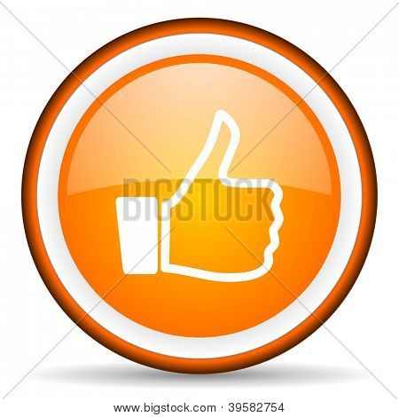 thumb up orange glossy circle icon on white background