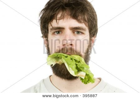 Unimpressed With Salad