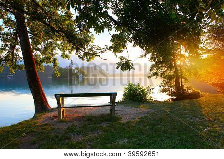 Calm Bled lake at sunrise with bench in a cozy garden among a trees
