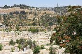 foto of ascension  - Mount of Olives and the Russian Orthodox Tower and Church of the Ascension - JPG