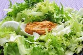picture of escarole  - escarole endive with romesco sauce - JPG
