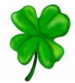 picture of four leaf clover  - illustration of an isolated painted four leaf clover - JPG