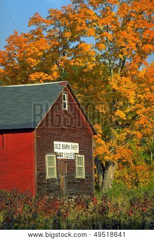 Old Barn Antiques In Autumn