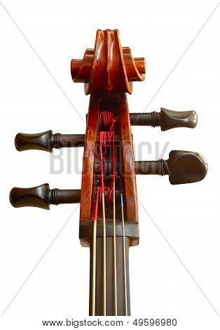 Isolated Cello Head