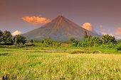 image of luzon  - Mount Mayon - JPG