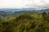 picture of luzon  - Beaucolic landscape of Baguio City on the slopes of the Cordillera mountains in the Benguet Province of Luzon Island Philippines - JPG