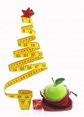 picture of christmas meal  - Healthy holiday food and diet - JPG