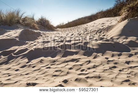 Closeup Of A Sandy Dune In Low Afternoon Light