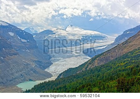 Alpine Glacier In Summer