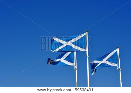 Three Scottish Or Saltire Flags Blowing In The Wind