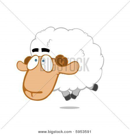 Humorous sheep