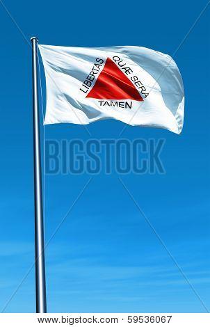 Minas Gerais (Brazil) flag waving on the wind