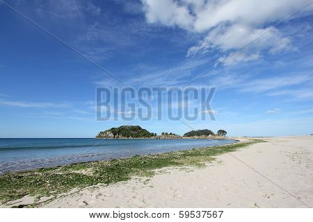 Moturiki Island by the beach