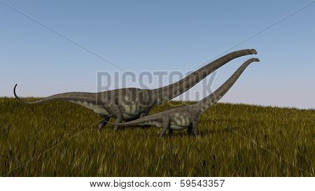 walking mamenchisaurus