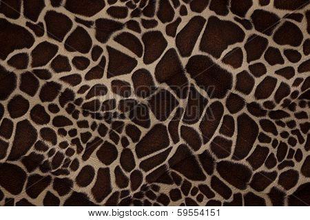 Texture Of Giraffe Skin