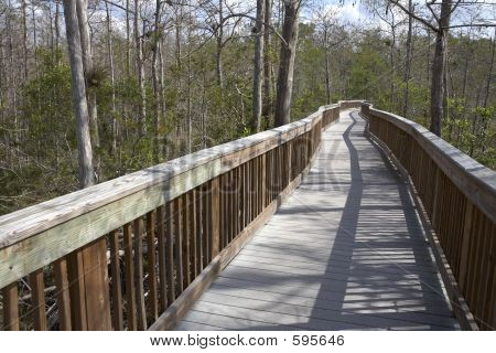 Raised Wooden Boardwalk