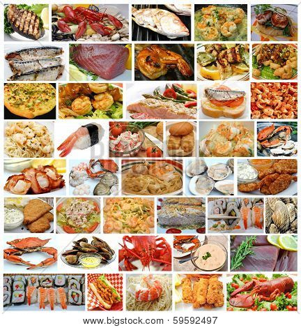Large Collage Of Fresh Seafood
