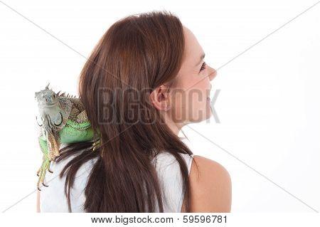 Iguana On The Shoulder