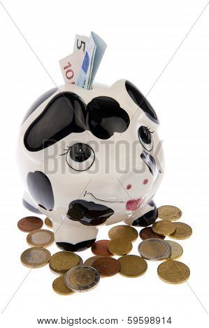 Pig In Coins With Banknotes