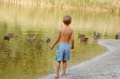pic of planting trees  - little boy standing on the pond bank and watching wild ducks - JPG