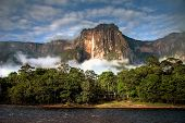 stock photo of canaima  - The highest waterfall Angel Falls in a soft morning light with clouds layin on the trees - JPG
