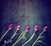 foto of instagram  - tulips on a wooden board - JPG