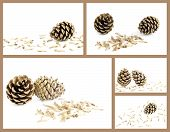 image of spores  - Collage pine cone with seeds spores on white background - JPG