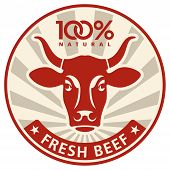 picture of cow head  - Label with the head of a cow vector illustration - JPG