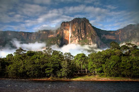 image of canaima  - The highest waterfall Angel Falls in a soft morning light with clouds layin on the trees - JPG