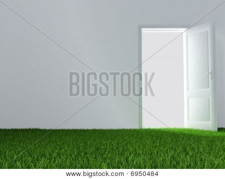 door and juicy green lawn