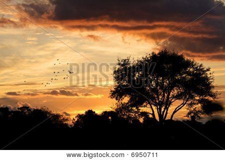 A Beautiful Sunset Glow