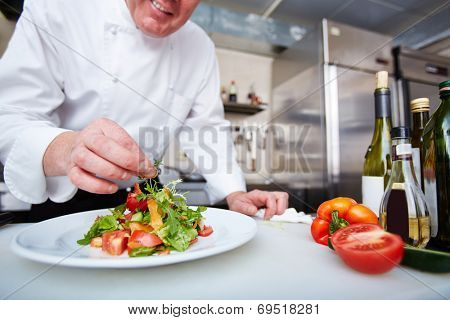 Hands of male chef serving vegetable salad on plate