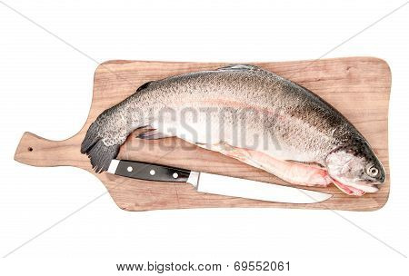 Raw Salmon Trout Fish On Cutting Board