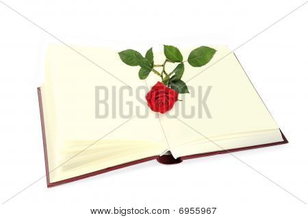Open Book And Rose Isolated Over White.