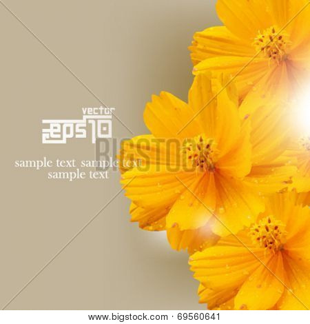 eps10 vector isolated overlapping flowers background