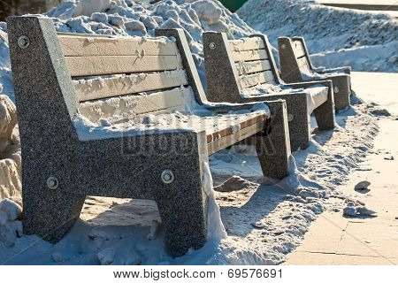 Frozen Bench In Park