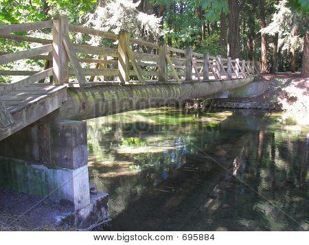 Along A Foot Bridge