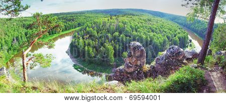 panoramic view of siberian taiga landscape at summer