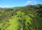 foto of na  - The beautiful green colors found in the Na Pali Coast Forests on the Hawaiian Island of Kauai - JPG