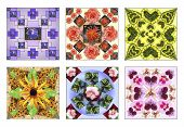 foto of six-petaled  - Set of six floral squares made of natural flowers in pastel colors - JPG