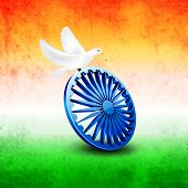 picture of asoka  - Beautiful white pigeons sitting on Asoka Wheel on national tricolors grungy background for 15th of August - JPG