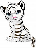 picture of cute tiger  - Illustration of cute white tiger - JPG
