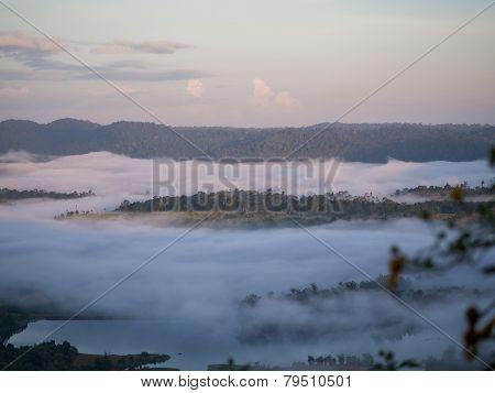 Misty Morning In Mountain
