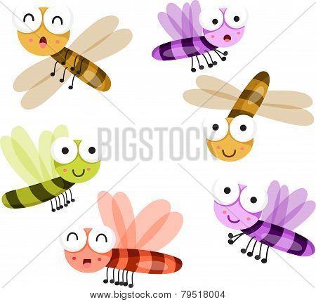 Illustrator of dragonflies set